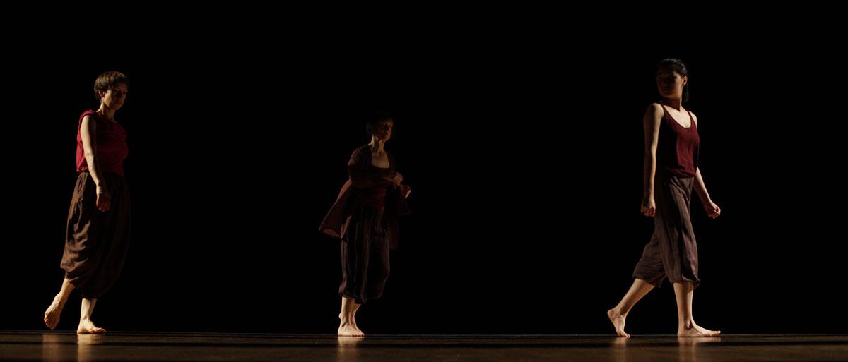 Dana Reitz: Latitude